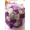 Nevěsta stužka vzrostla perel barvu pásu stuhu drží květiny