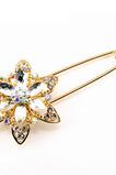 Korzet módní křišťálové slitiny Ženy vykládané diamant Brož